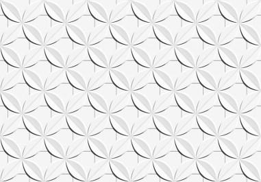 ceusa-dalia-branco